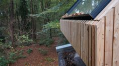 First detail of the Larch cladding with a curtain wall window and shutter ready!