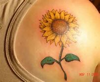 sunflower tattoos - Bing Images