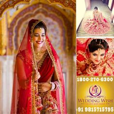 We are most #Alive when we're in #Love  #MarriageBeuroInChandigarh Wedding Wish Pvt. Ltd.