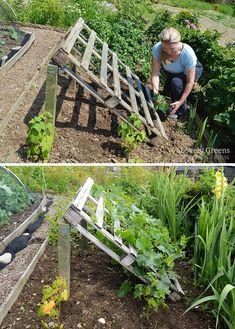 Paletten im Garten: nützliche Gartenideen zum Selbermachen  #garten #gartenideen #nutzliche #paletten #selbermachen