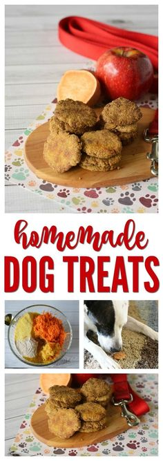 Homemade Dog Treats! Easy Recipe for a DIY Treat for your Dogs! So easy to make and the kids can help!