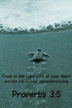 Proverbios 3:5 Fíate de Jehová de todo tu corazón,Y no te apoyes en tu propia prudencia.
