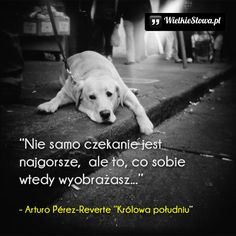 Dog Quotes, Life Quotes, Romantic Quotes, Keanu Reeves, Deep Thoughts, Reiki, Wise Words, Poems, Best Friends