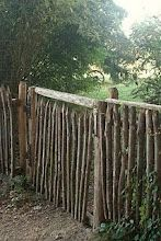 ♥ this fence