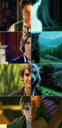 James Potter, Remus Lupin,  Sirius Black and Peter Pettigrew