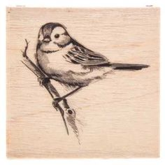 Inkadinkado® Rubber Stamp-Sparrow, , hi-resMeasures: Inkadinkado® Rubber Stamps have a hardwood base and an indexed edge to make the stamp easier to hold. A precisely cut rubber design layer. Sparrow Drawing, Sparrow Tattoo, Bird Drawings, Animal Drawings, Pencil Drawings, Art Du Croquis, Sparrow Bird, Bird Pictures, Little Birds