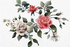 Vintage Red and White Rose Wallpaper