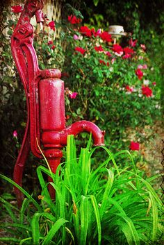 I want one of these in my yard (and I love red)