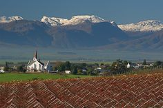 Riebeek Kasteel - about an hour's drive from Cape Town - South Africa. beautiful town with so much to enjoy! Life Is Beautiful, Beautiful Places, Apartheid Museum, South Afrika, Cape Town South Africa, Out Of Africa, Countries Of The World, West Coast, Places To See