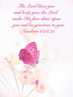 The Lord bless you and keep you; the Lord make His face shine upon you and be gracious to you. Numbers 6:24,25