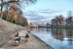The River Ouse, York