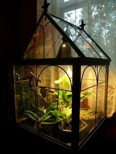 Find at H Potter http://www.hpotter.com/terrariums/square-freestanding-wardian-case-terrarium/