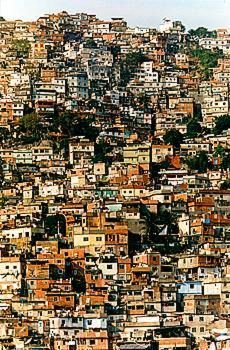 Rio's favelas. These favelas are the world's oldest illegal squats