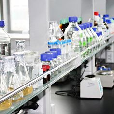 This is the corner of our company's laboratory, we have professional R & D personnel. Medical Field, Food Safety, New Market, Pet Health, Corner, Food Security