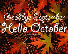 Hello October Goodbye October Month Images: Find the best Hello October Pictures, Photos and Images. Share Hello October Quotes, Sayings, Wallpapers with your friends. Hello October Images, October Pictures, Hello November, New Month Quotes, November Quotes, Welcome November, Welcome Fall, Seasons Months, Months In A Year