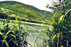Green Lake, Vineyard, Around The Worlds, Photo And Video, Outdoor, Instagram, Outdoors, Vine Yard, Vineyard Vines