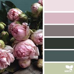 today's inspiration image for { flora palette } is by @fairynuffflower ... thank you, Steph, for another breathtaking #SeedsColor photo share!