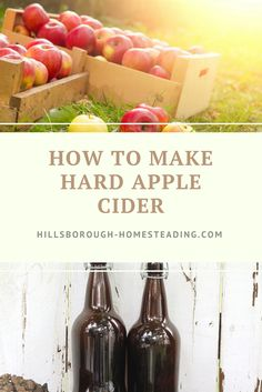 Easy to make hard apple cider recipe. Make the best of Fall Fermentation with either your own apples, or store bought apple cider. Click the image to find out how.   Hillsborough Homesteading