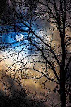 beautiful moon,trees and clouds Beautiful Moon, Beautiful World, Beautiful Images, Beautiful Flowers, Shoot The Moon, Moon Art, Blue Moon, Stars And Moon, Stars At Night