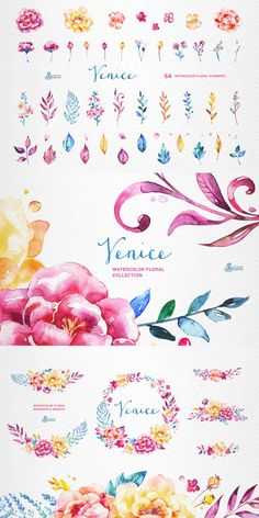 Venice Watercolor Floral Collection - https://www.designcuts.com/product/venice-watercolor-floral-collection/