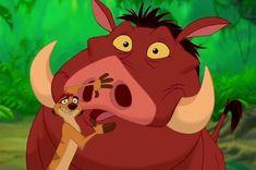 Timon and Pumbaa explain Hakuna Matata. Hakuna Matata, Disney Pixar, Walt Disney, Disney Characters, Disney Sidekicks, Disney Films, Disney Insults, Literary Technique, Disney Duos