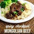 Spicy Crockpot Mongolian Beef Recipe!! SO AMAZING! Tablesppon of El Yucateco Hot Sauce and WOW