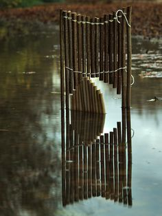 Door open to the Moon by Fesson Ludovic, via Behance