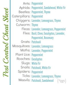 Pest Control Cheat Sheet for Ants Aphids Beetles Caterpillars Chiggers Cutworm Fleas Flies Gnats Mosquitoes Moths Plant Lice Roaches Slugs Snails Spiders Ticks and Weevils Natural Spider Repellant, Peppermint Plants, Diy Pest Control, Bug Control, Weed Control, Insect Repellent, Mice Repellent, Gnat Repellant, Garden Pests