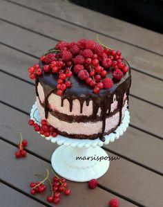 Marsispossu: Marjaisa suklaakakku, Chocolate cake with berries