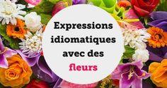 Expressions idiomatiques avec des fleurs - aba english