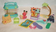Littlest Pet Shop Lot Beach accessories Spider # 329 Sea Horse Hermit carb MORE #Hasbro