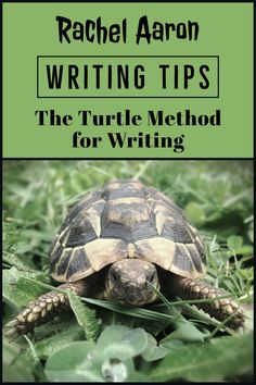 Writing Wednesdays: The Turtle Method for Faster, Better, More Fun Writing Cool Writing, Writing A Book, Writing Tips, More Fun, Turtle, Author, Books, Write A Book, Turtles