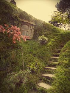 A window peeking out of the earth, grassy slope, stone stairs