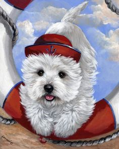 West Highland Terrier Sailor Ahoy!-GF Suzanne Renaud http://www.amazon.com/dp/B00FH5ZC6K/ref=cm_sw_r_pi_dp_ZDL9vb1GB65XN