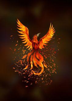 Phoenix Bird Meaning, Real Phoenix Bird, Phoenix Wings, Phoenix Artwork, Phoenix Wallpaper, Phoenix Drawing, Phoenix Tattoo Feminine, Tribal Phoenix Tattoo, Fire Tattoo