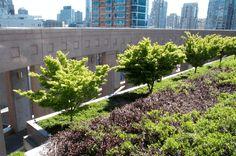 Grünes Dach - gute Isolierung und Nachhaltigkeit - http://freshideen.com/architektur/grunes-dach.html