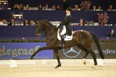 Dressuur op Jumping Amsterdam - Horses.nl  Imke Schellekens- Bartels & Toots