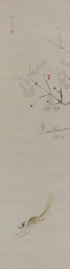 Squirrel in Spindle tree by Hanzawa Ryoka(1903-1935). Japanese hanging scroll painting.