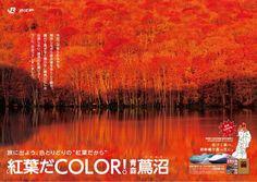秋の燃えるような紅葉のポスターも話題になりました。それぞれ3種類ずつポスターが作られています。