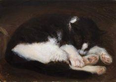 Babu Sleeping, Postcard from Provence, Julian Merrow-Smith - www.shiftinglight.com
