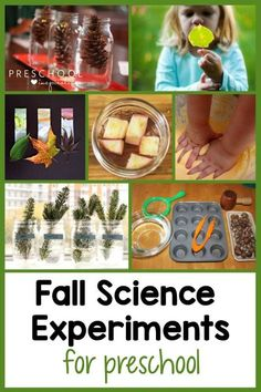 Fall science activities are some of the best because they are simple to put together and loads of fun for children! I love that nature provides the perfect materials for these: leaves, acorns, pumpkins, apples, and more! These autumn science experiments and activities are perfect for fall science lesson plans, leaf experiments for preschoolers, and nature studies. Preschool Science Activities, Autumn Activities For Kids, Science Lesson Plans, Fall Preschool, Preschool Lesson Plans, Science Experiments Kids, Science Lessons, Science For Kids, Science Projects
