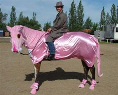 Pink panther horse costume