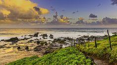 Maui Ho'okipa Beach Park by Shaoyong