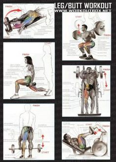 Leg But Workout - Healthy Fitness Exercises Gym Low Body - Yeah We Train ! by simone