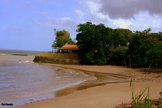 https://flic.kr/p/Pqg9dU | DSC_3573.NEF | Praia do ariramba,mosqueiro,PA,Brasil.