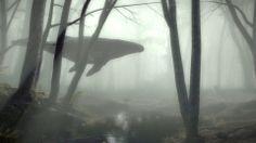 Una ballena jorobada nadando en el bosque Este vídeo ha sido realizado por la agencia publicitaria Gentleman Scholar para la organización e...