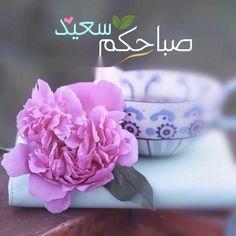 Good Morning Photos, Good Morning Messages, Good Morning Good Night, Morning Wish, Evening Quotes, Flower Phone Wallpaper, Morning Texts, Morning Flowers, Morning Greeting