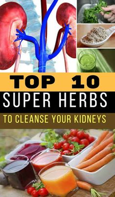10 super herbs to cleanse your kidneys