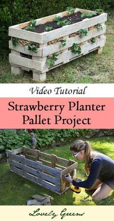 Video Tutorial: How to Make a Strawberry Pallet Planter by AllThingsGood