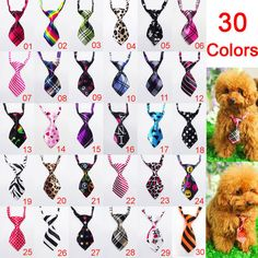 Adjustable Dog Cat Pet Lovely Adorable Grooming Tie Necktie 30 Pattern Available | eBay